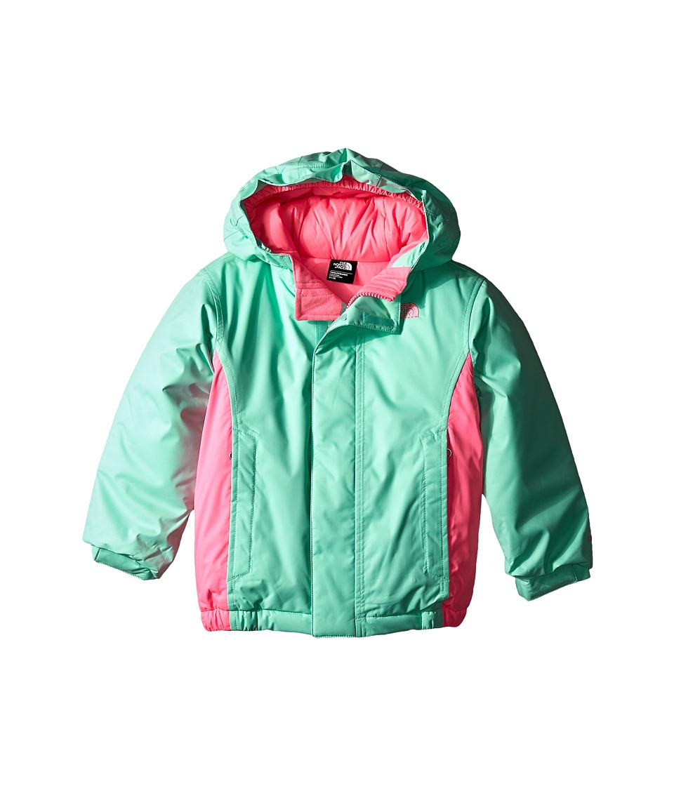 The North Face Kids - Delea Insulated Jacket (Toddler) (Surf Green) Girl's Coat