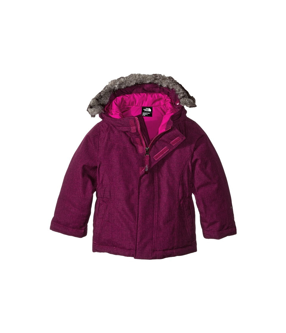 The North Face Kids - Greenland Down Jacket (Toddler) (Luminous Pink) Girl