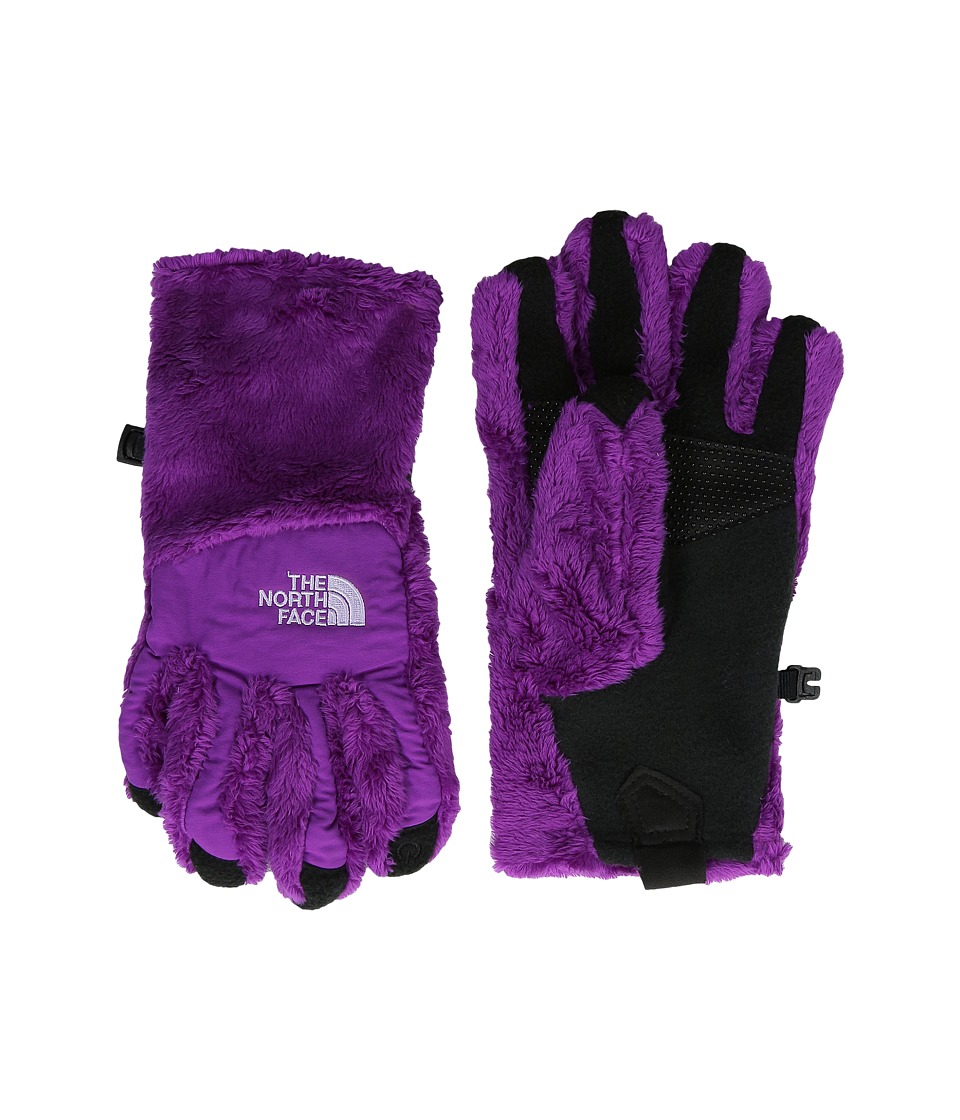 The North Face Kids - Denali Thermal Etip Glove (Big Kids) (Magic Magenta) Ski Gloves