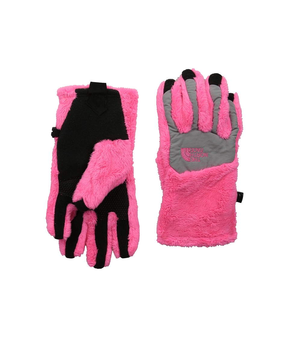 The North Face Kids - Denali Thermal Etip Glove (Big Kids) (Gem Pink/Metallic Silver) Ski Gloves