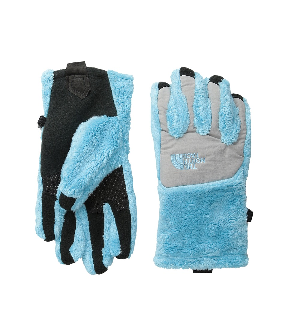 The North Face Kids - Denali Thermal Etip Glove (Big Kids) (Fortuna Blue/Metallic Silver) Ski Gloves