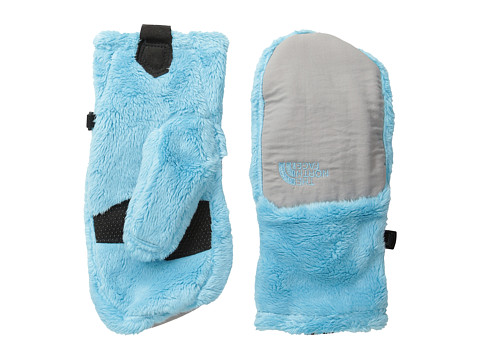 The North Face Kids - Denali Thermal Mitt (Big Kids) (Fortuna Blue/Metallic Silver) Extreme Cold Weather Gloves