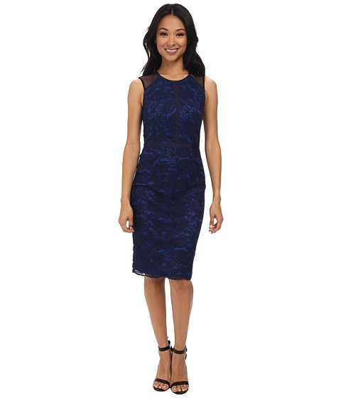 Maggy London - Lace Sheath w/ Mesh Detail (Navy) Women's Dress