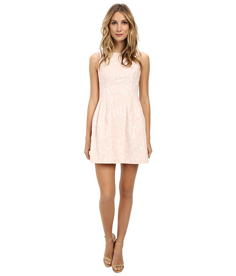 Aidan Mattox - Sleeveless Paisley Lace Dress (Blush) Women's Dress