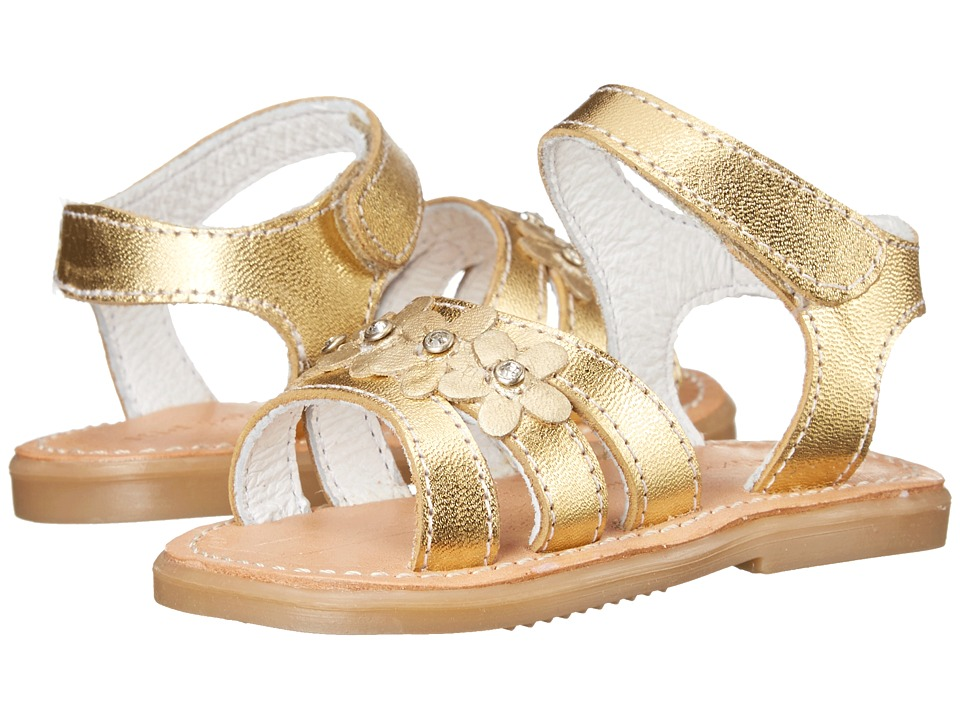 Kid Express - Cesia (Infant/Toddler) (Gold Metallic) Girls Shoes