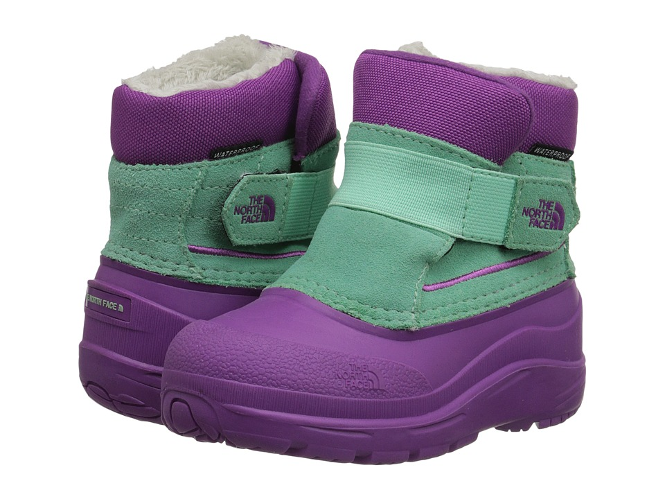 The North Face Kids Alpenglow (Toddler) (Byzantium Purple/Surf Green) Girls Shoes