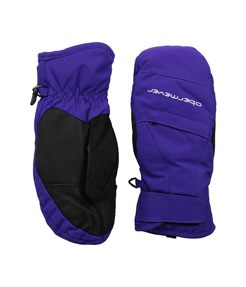 Obermeyer Kids - Radiator Mitten (Little Kid/Big Kid) (Purple Reign) Over-Mits Gloves