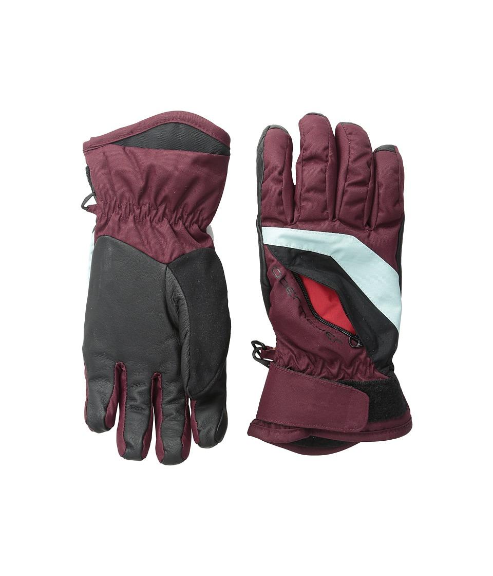 Obermeyer Kids - Alpine Glove (Toddler/Little Kid) (Mojave Red) Extreme Cold Weather Gloves