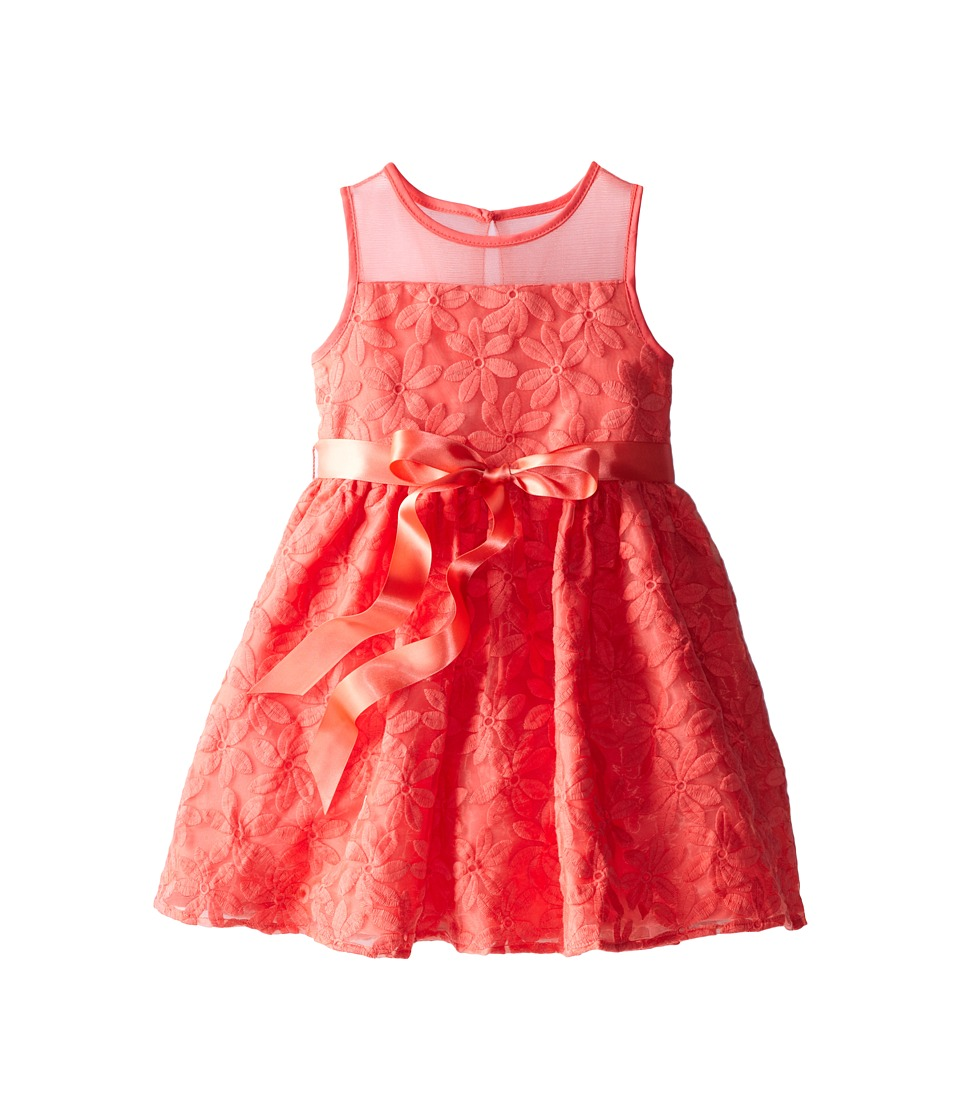 Us Angels - Daisy Embroidery Organza Dress (Little Kids) (Coral) Girl