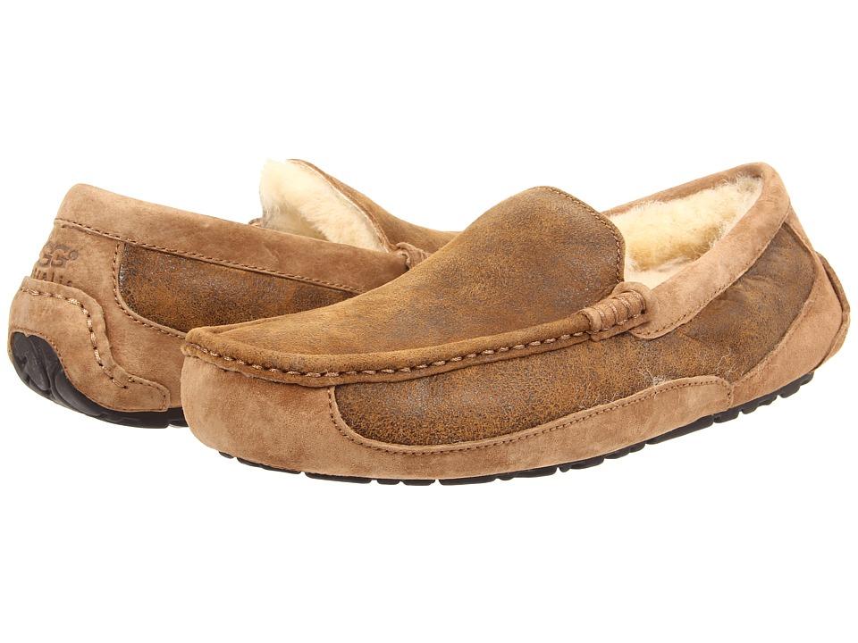 UGG Ascot Bomber (Bomber Jacket Chestnut Twinface) Men's Slip on Shoes