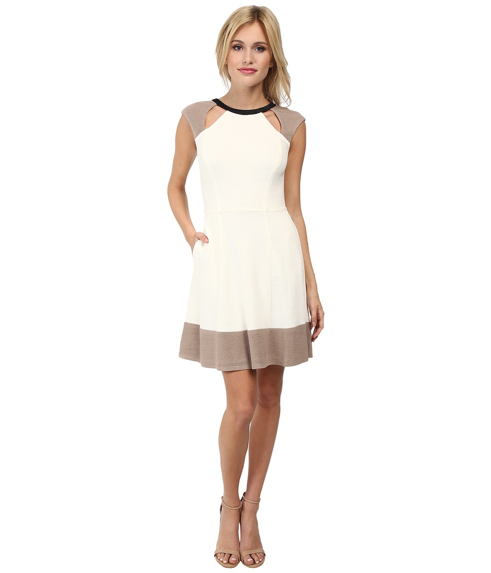 ABS Allen Schwartz - Fit and Flare Color Blocked Dress (Ivory) Women's Dress