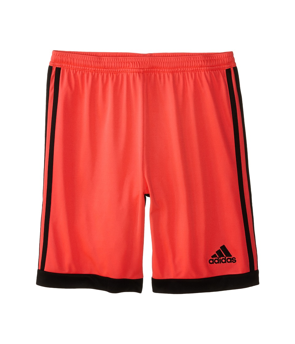 adidas Kids - Tastigo 15 Shorts (Little Kids/Big Kids) (Flash Red S15/Core Black) Kid's Shorts
