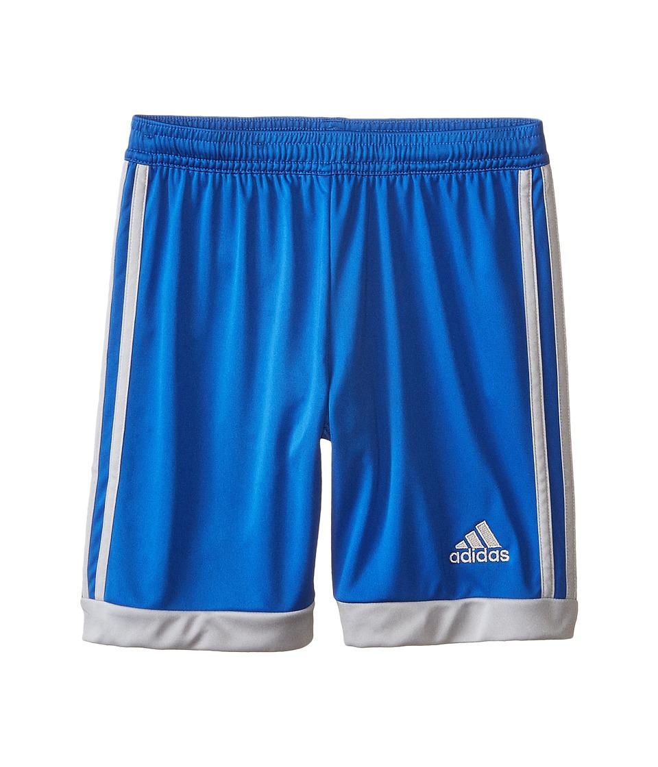 adidas Kids - Tastigo 15 Shorts (Little Kids/Big Kids) (Blue/Clear Onix) Kid's Shorts