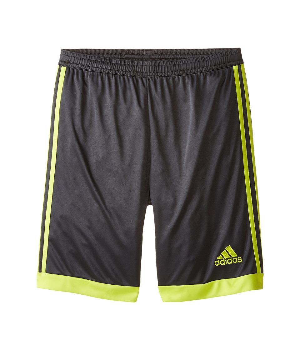 adidas Kids - Tastigo 15 Shorts (Little Kids/Big Kids) (Dark Grey/Semi Solar Yellow) Kid's Shorts