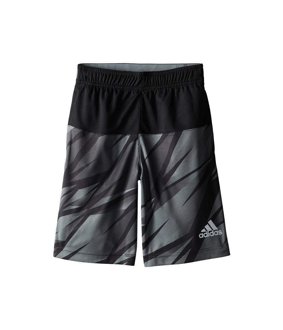 adidas Kids - Ultimate Swat Graphic Shorts (Big Kids) (Black/Grey) Boy
