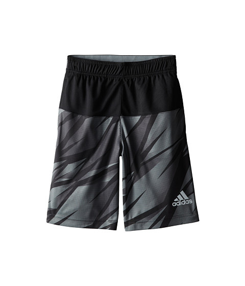 adidas Kids - Ultimate Swat Graphic Shorts (Big Kids) (Black/Grey) Boy