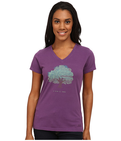Life is good - Crusher Vee (I Like it Here Tree/Smoky Plum) Women's T Shirt