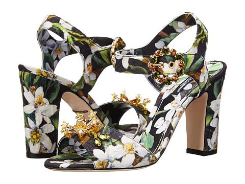 Dolce & Gabbana - C19230 (Black/Green) High Heels