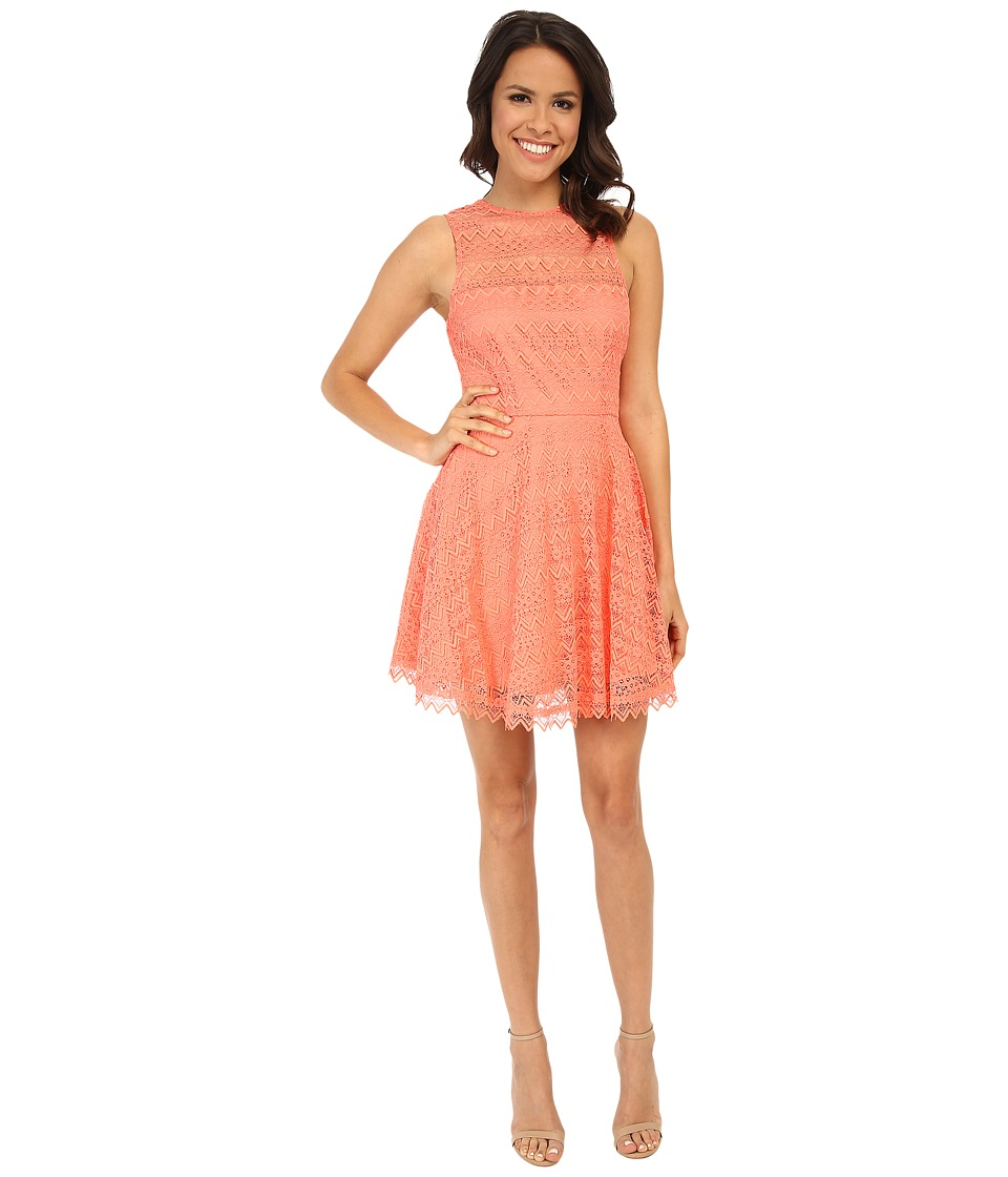 BB Dakota - Lotte Dress (Sorbet) Women's Dress