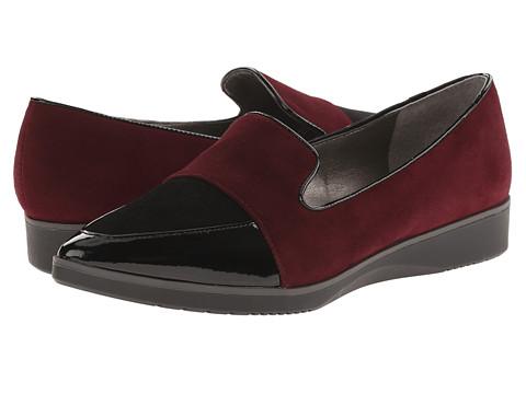 Tahari - Flight (Wine/Black Kid Suede/Kid Suede) Women's Shoes