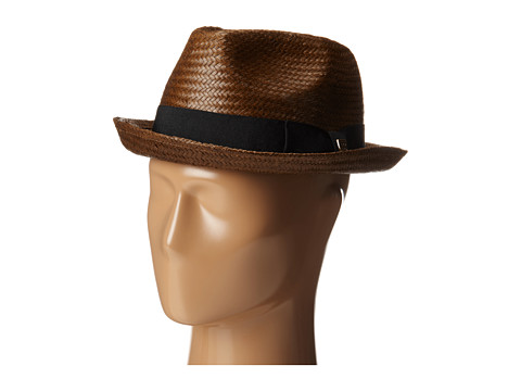 Brixton - Castor Fedora (Brown/Black) Traditional Hats