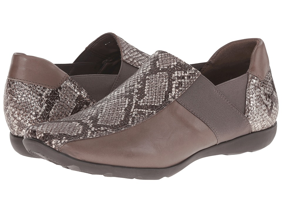 Sesto Meucci Graham (Roccia Metallic Cricket Vip/Soft Taupe Calf/Elastic) Women