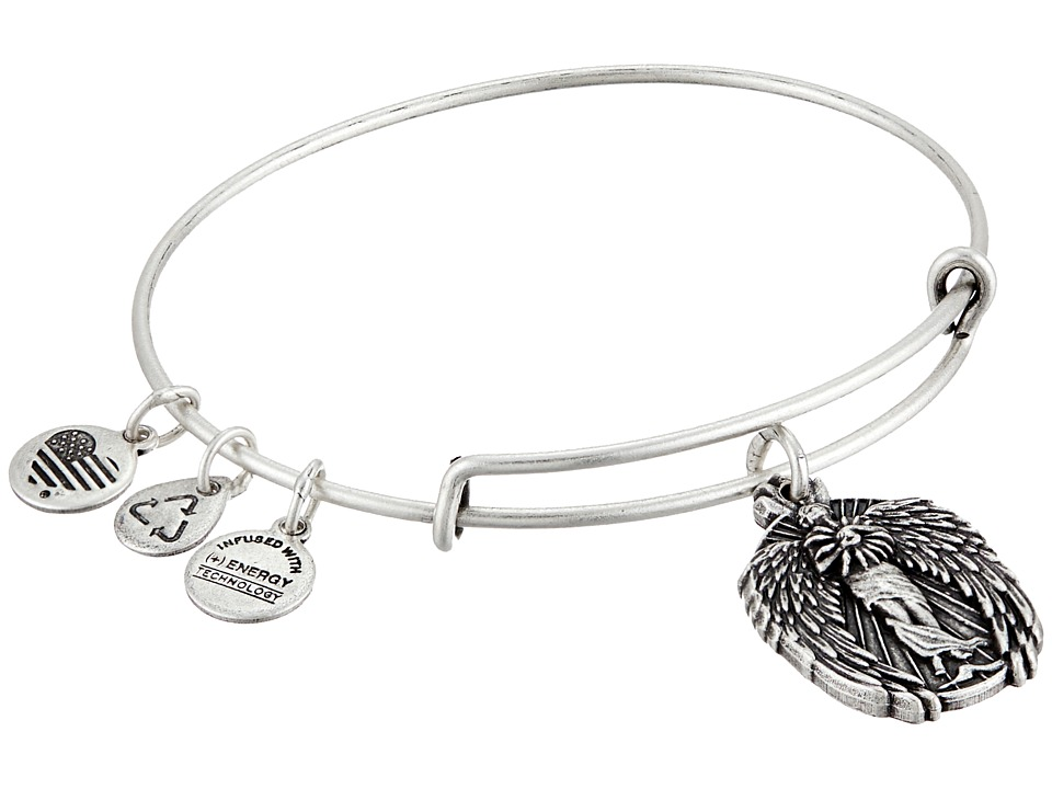 Alex and Ani - Guardian of Knowledge Charm Bangle (Rafaelian Silver Finish) Charms Bracelet