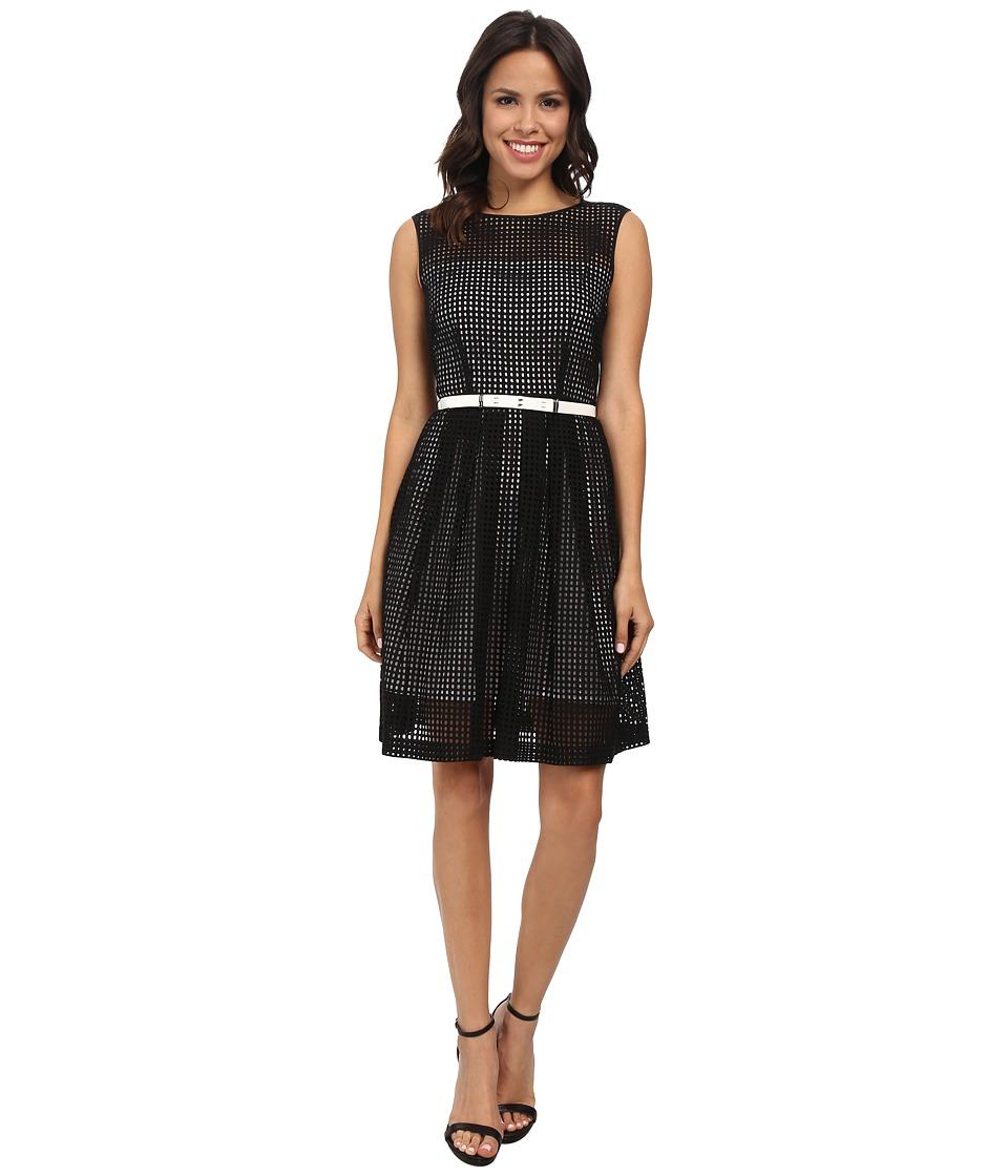 Tahari by ASL - Alessia - P Dress (Black/Ivory) Women's Dress