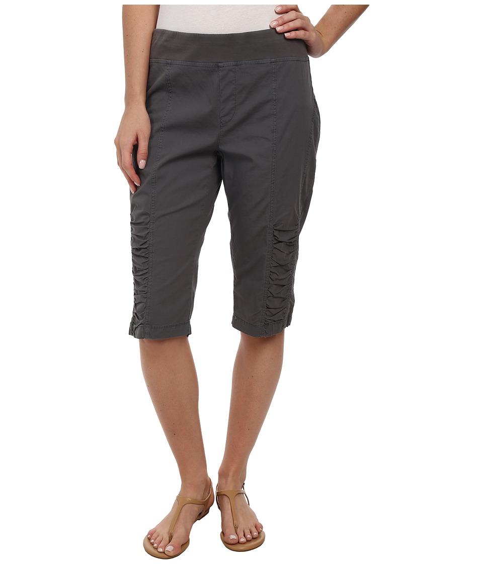 XCVI - Tatem Bermuda (Sambuka) Women's Shorts plus size,  plus size fashion plus size appare