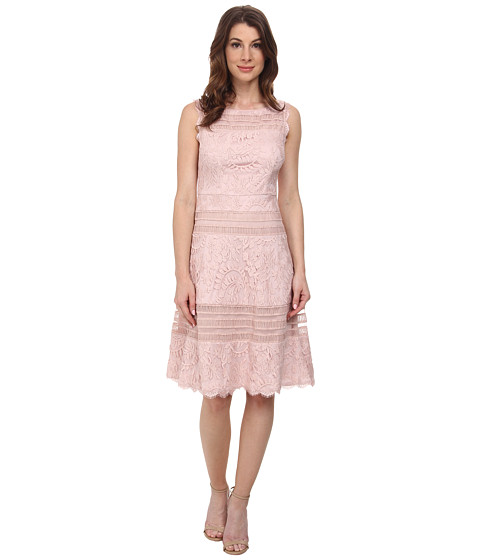 Adrianna Papell - Splice Seam Detail Lace Fit And Flare Dress (Petal) Women