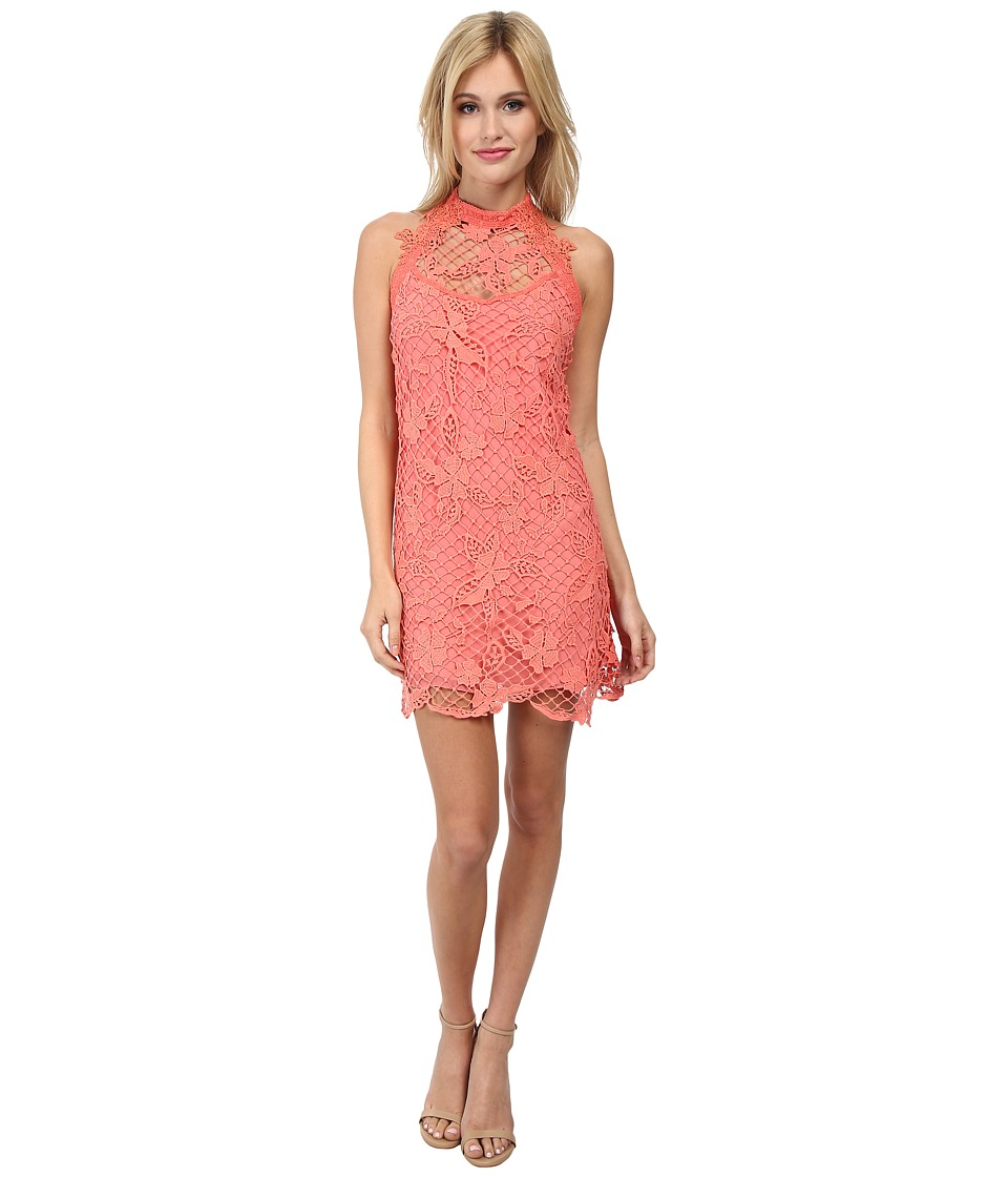 Free People - Snowdrop Lace Trapeze Dress (Coral Combo) Women's Dress