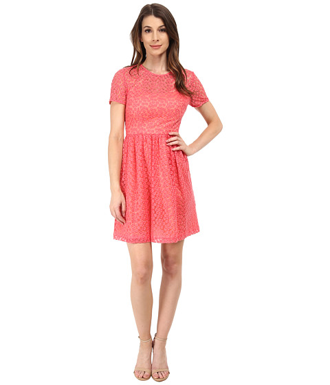 Trina Turk - Paris Dress (Pink Peony) Women