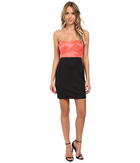 Gabriella Rocha - Tube Elastic Banding w/ Ponte Skirt Dress (Black/Coral) Women