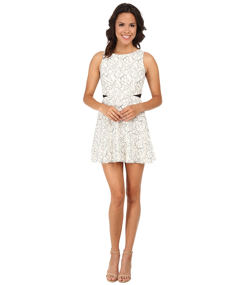 Gabriella Rocha - Outline Lace Illusion Waist Skater Dress (Ivory/Black) Women's Dress