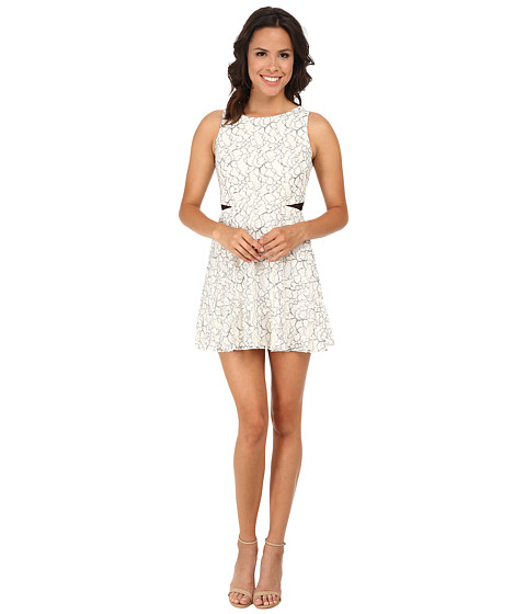 Gabriella Rocha - Outline Lace Illusion Waist Skater Dress (Ivory/Black) Women