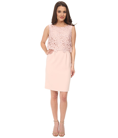 Tahari by ASL Petite - Petite Lace Popover (Blush Pink) Women's Dress