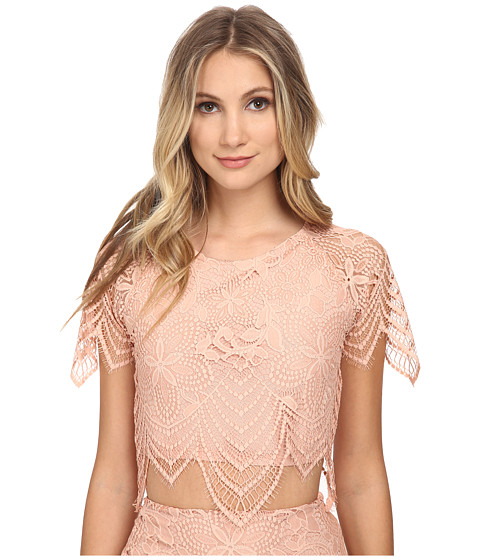 For Love and Lemons - Luna Crop Top (Pale Blush) Women's Clothing
