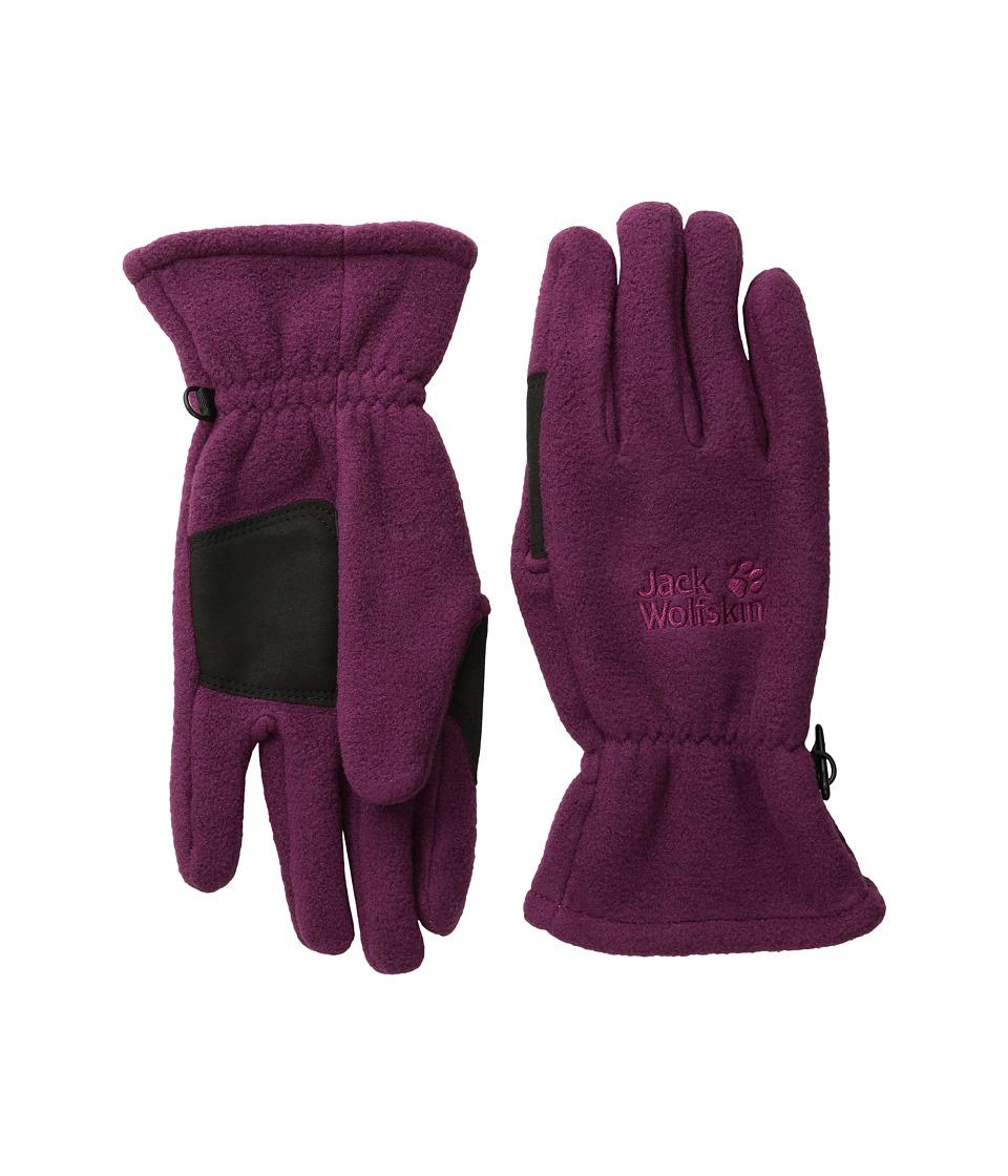 Jack Wolfskin - Artist Glove (Wild Berry) Extreme Cold Weather Gloves