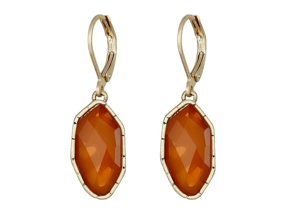 The Sak - Irregular Stone Drop Earrings (Carnelian) Earring