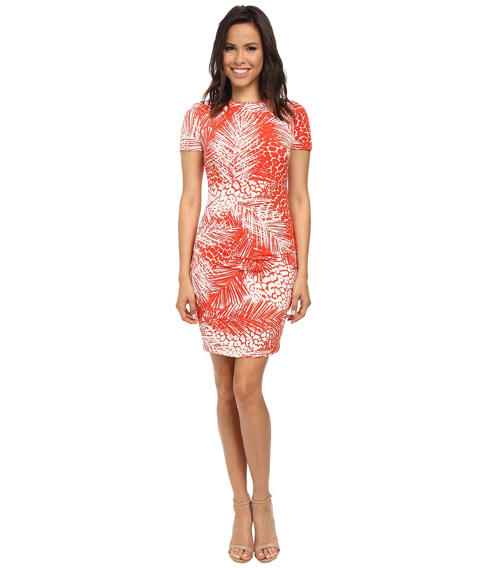 Vince Camuto - Short Sleeve Palm Leave Printed Jersey Bodycon w/ Ruching (Print) Women