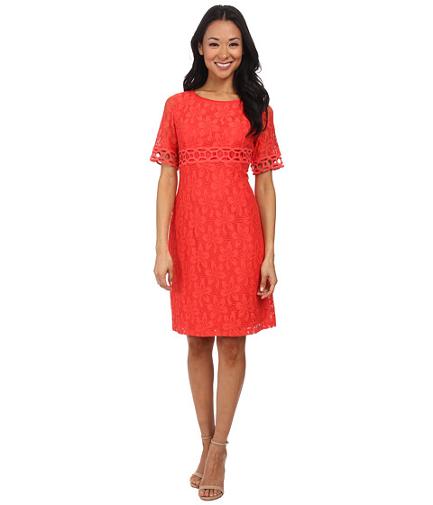 Jessica Howard - 3/4 Sleeve Scoop Neck Shift Dress with Embroidered Bands (Poppy) Women's Dress