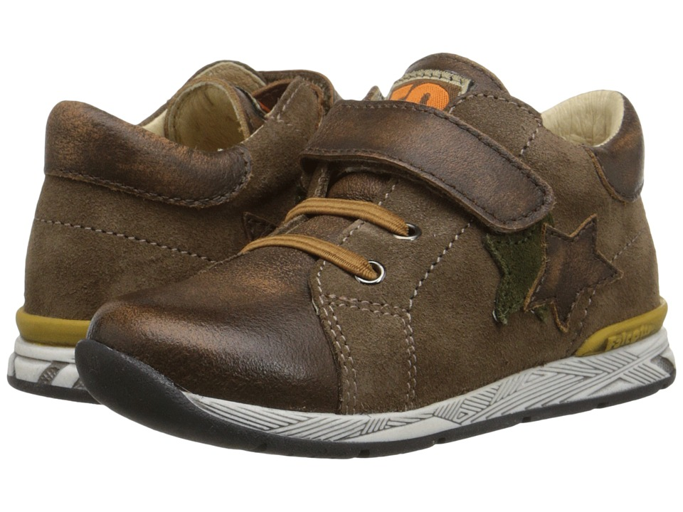 Naturino - Falcotto Dennis (Toddler) (Brown) Boy's Shoes