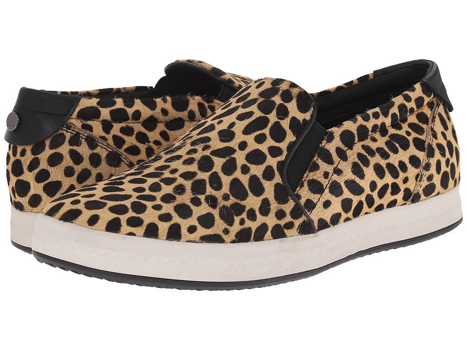 Geox - WMODESTY27 (Camel) Women's Shoes