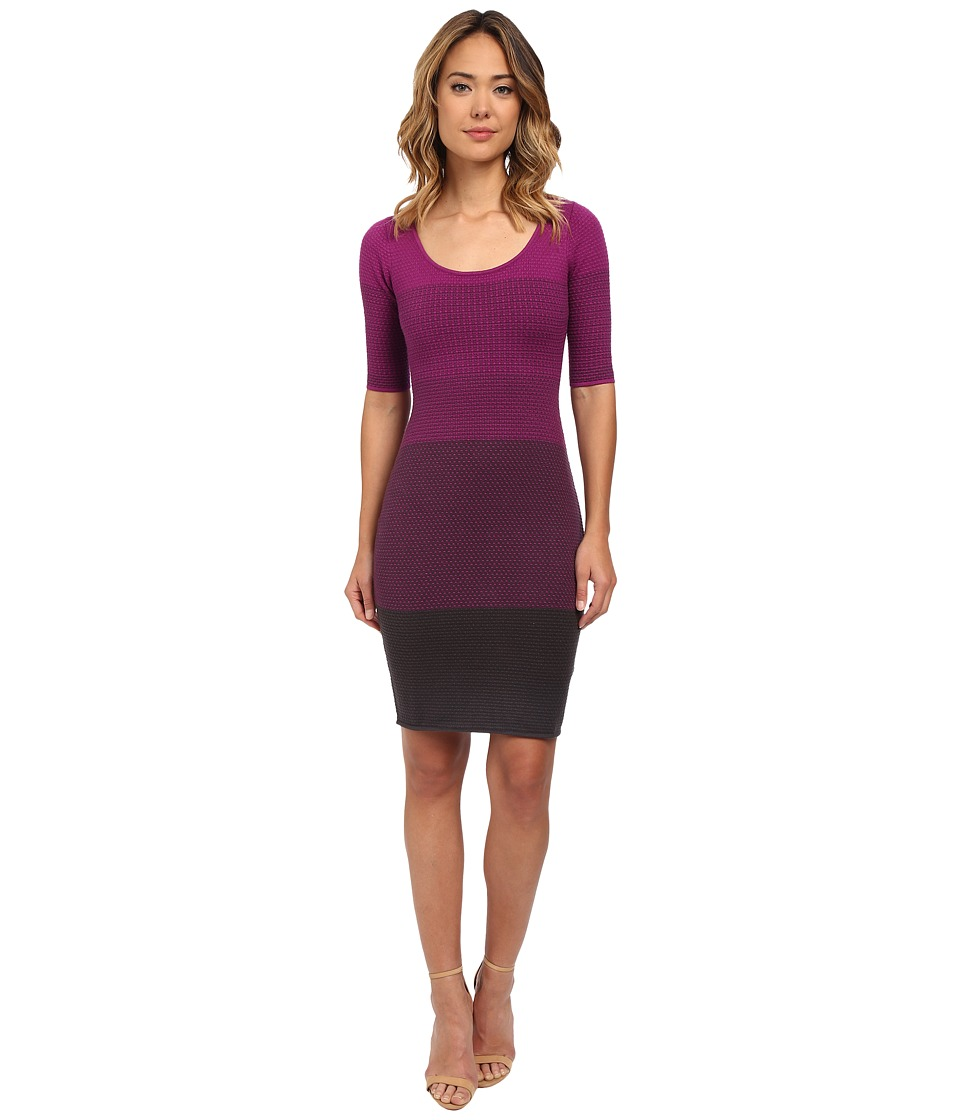 NYDJ - Adalyn Ombre Sweater Dress (Berry) Women