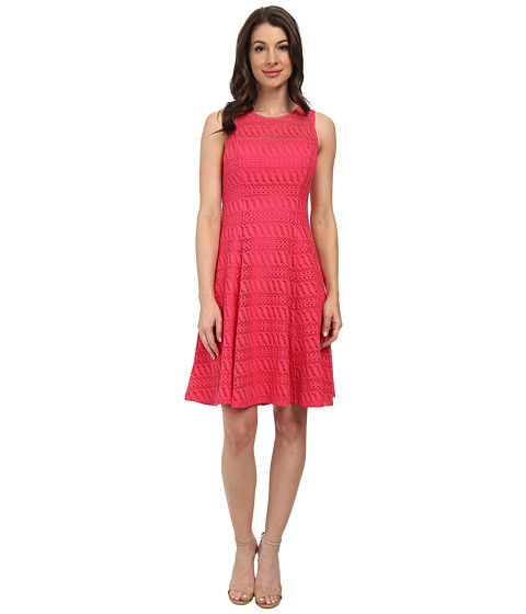 Maggy London - Cable Lace Sleeveless Fit Flare (Sugar Pink) Women