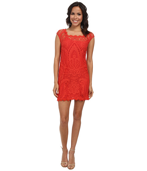 Nicole Miller - Abby Placement Lace Dress (New Terracotta) Women's Dress