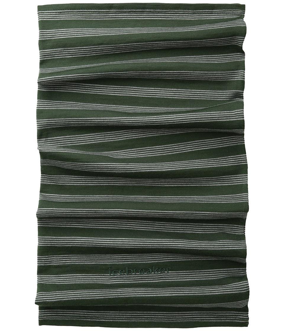 Icebreaker - Flexi Chute Stripe (Conifer/Metro Heather) Scarves