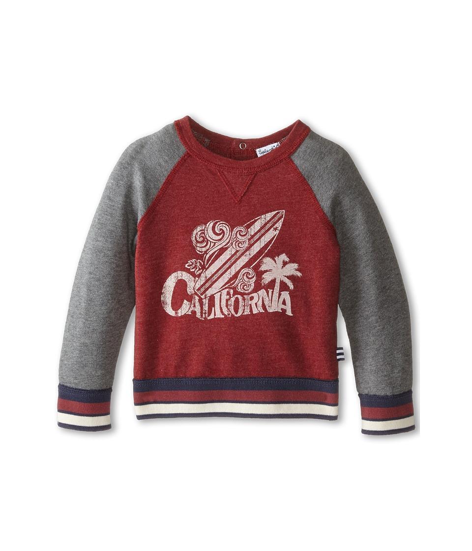 Splendid Littles - Active Sweatshirt (Infant) (Dark Red) Boy's Sweatshirt
