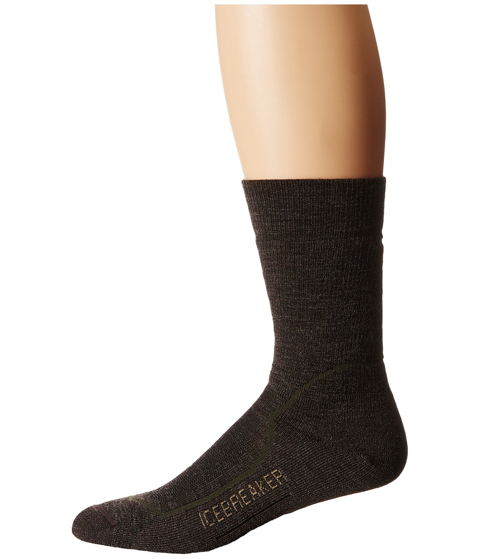 Icebreaker - Hike + Medium Crew 1-Pair Pack (Earthen Heather/Spruce/Oak) Men's Crew Cut Socks Shoes