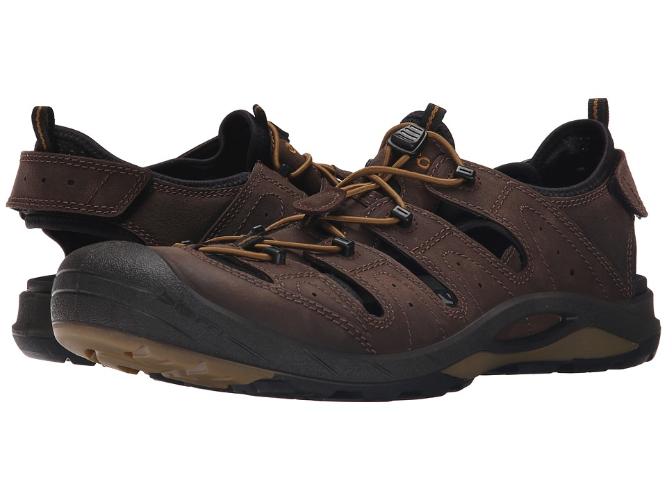 ECCO Sport - Biom Delta Offroad (Coffee/Black/Dried Tomato) Men's Shoes